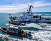 Mexico and Sea Shepherd Partner to Save Vaquita Porpoise
