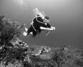 The Overlooked Health Benefits of Diving
