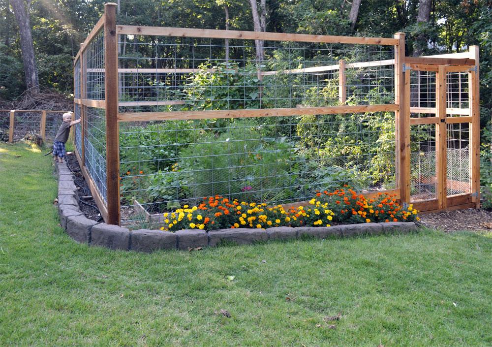 6 Tips To Create An Animal Proof Garden Fence The Seasonal Homestead