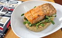 Roasted Salmon with Cauliflower Puree & Sunflower Greens