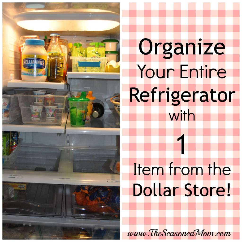 Organize Your Entire Refrigerator with 1 Item from the Dollar Store!