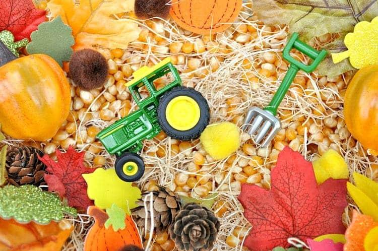 Harvest Time! Fall Sensory Bin
