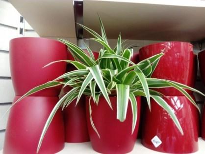 Elho Indoor plastics