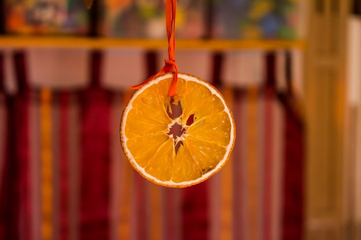 dried-dried-fruit-hanging-38636