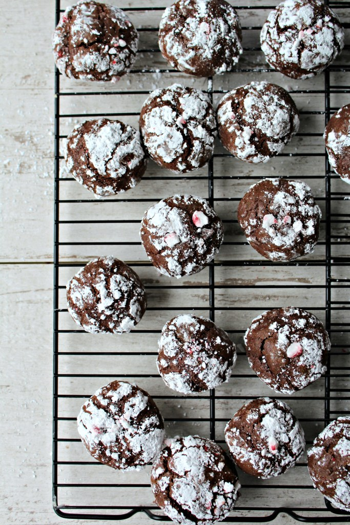 a36e035b02 Chocolate Crinkle Cookies - The Secret Ingredient Is
