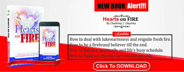 Download Hearts on fire