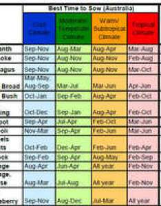 Sowing chart vegetables herbs and flowers theseedcollection information pagewebsite terms of also rh
