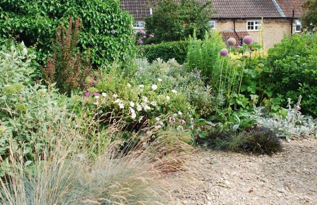 Tour of a Bradford-on-Avon garden