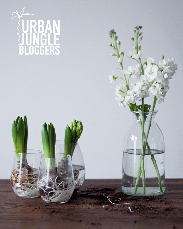 Urban Jungle Bloggers | Spring styling | These Four Walls blog