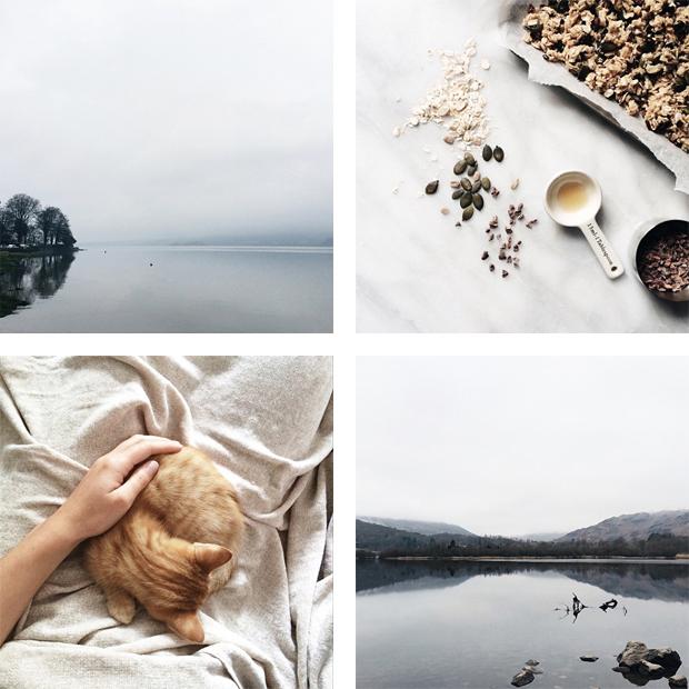 Instagram Inspiration - Blend & Bloom | These Four Walls blog