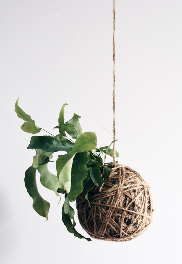 How to make kokedama plant sculptures | These Four Walls blog