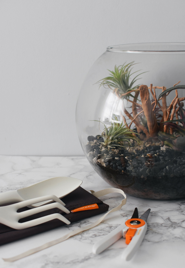 How to create a terrarium with Fiskars | These Four Walls blog