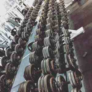 weights lined up at the gym