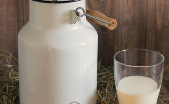 Raw Milk - The Self Sufficient HomeAcre