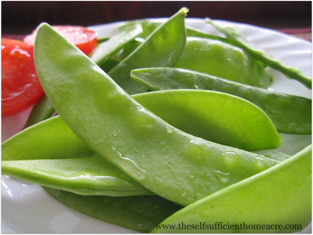 how to cook fresh peas from the garden