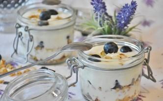 Goat Milk Yogurt - The Self Sufficient HomeAcre