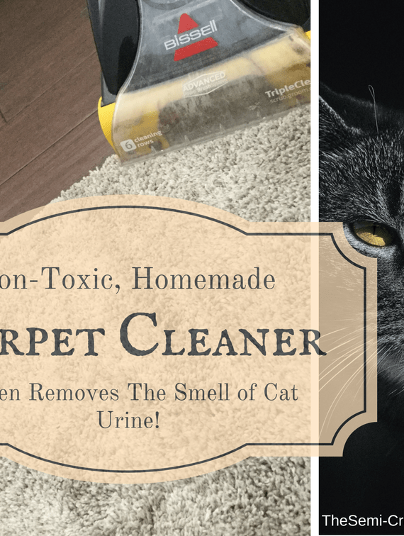 Non-Toxic Carpet and Upholstery Cleaner That Even Gets Rid of Cat Urine!