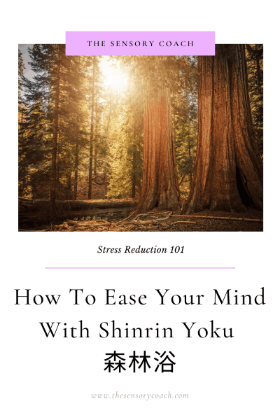 How to ease your mind with Shinrin Yoku TheSensoryCoach.com