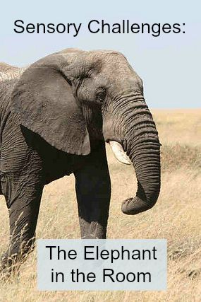 Revealing Your Child Has Sensory Issues -- The Elephant in the Room