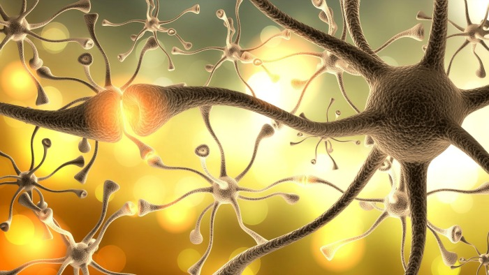 Study: Brain's Wiring Connected To Sensory Processing Disorder