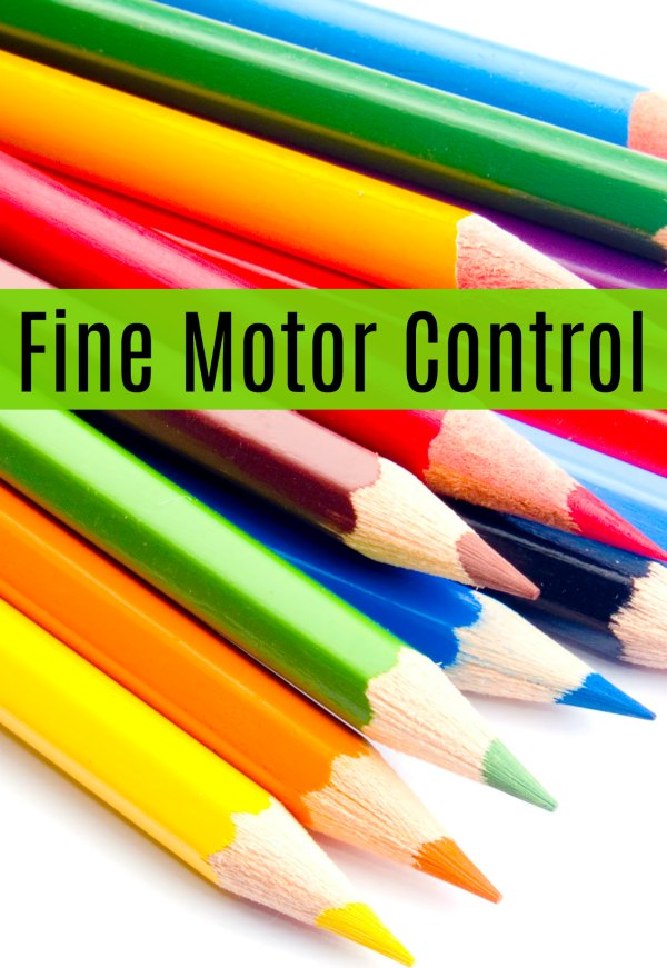 Fine Motor Control in Children