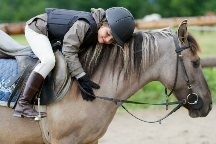 Study Suggests Equine Therapy is Effective