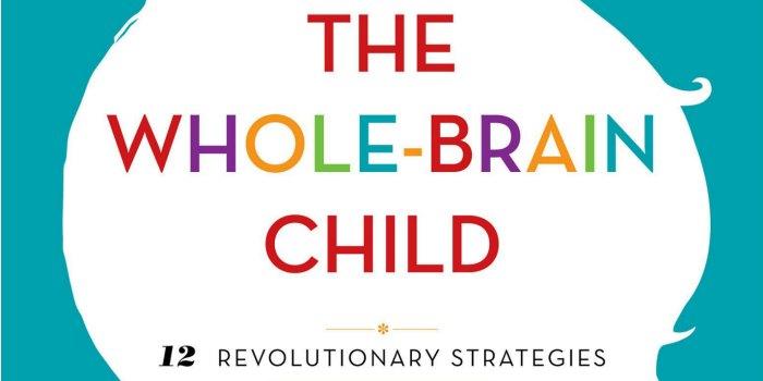 The Whole Brain Child 12 Revolutionary Strategies To Nurture Your