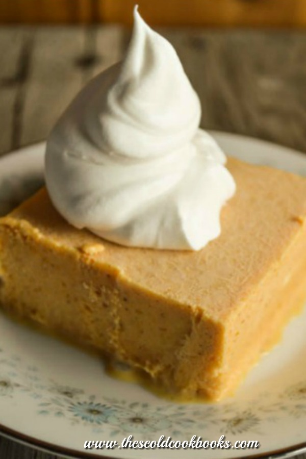 Frozen Pumpkin Delight Dessert is a combination of pumpkin and ice cream that is sweet and delicious.