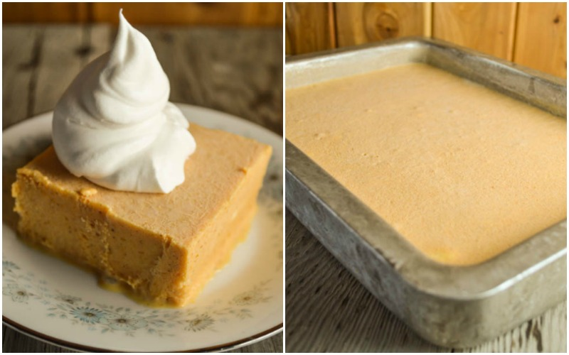 Frozen Pumpkin Delight is the perfect dessert for all of those pumpkin spice latte (PSL) fans out there, especially if you add a dollop of whipped cream.