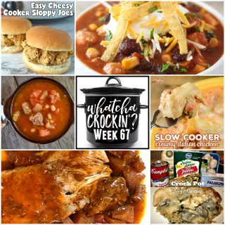 Crock Pot Sweet and Sour Pork Loin with Pineapple – WCW – Week 67