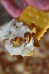 Hot Dried Beef Dip is a creamy dip with all the classic flavors of a cheese ball---cream cheese, dried beef, and pecans. This new version may soon replace your standby cheese ball recipe for your next get together.