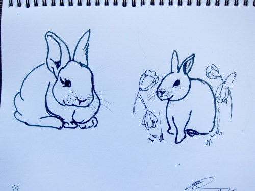 Sketches of bunnies in permanent marker.