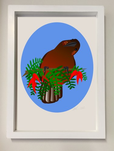 Illustration of a kaka displayed in a white frame.