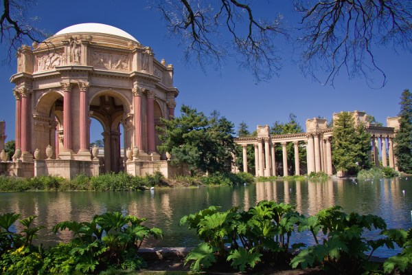 Palace Of Fine Arts Center Lease