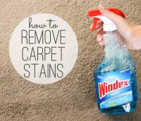 rug stains removal  Roselawnlutheran