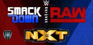 Between - Analizziamo la WWE