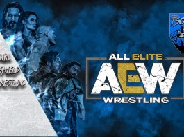 AEW Win/Loss record: la classifica subirà un reset in futuro - AEW