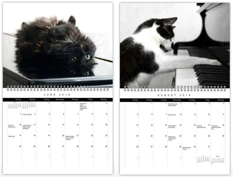 piano cat calendar