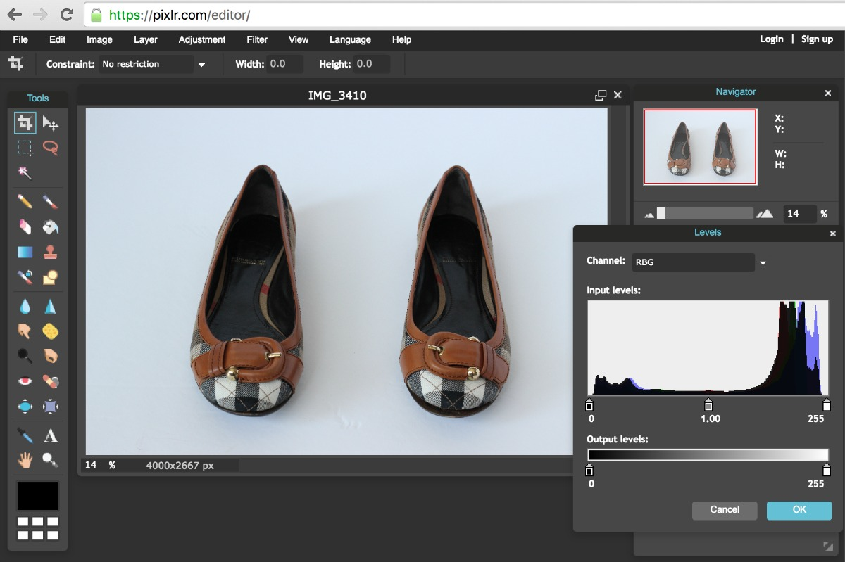 Using Pixlr to Edit White Background in Product Photos-Adjust Input