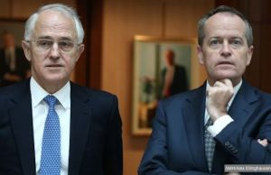 shorten and turnbull covfefe