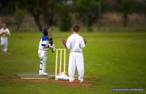 under 9s cricket