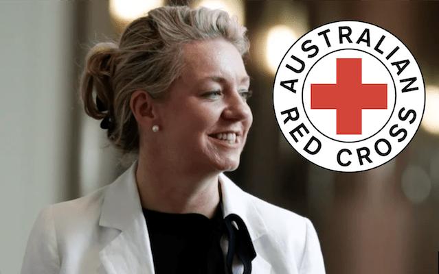 Red Cross Appoints Bridget McKenzie, To Ensure Bushfire Money Goes Where It's Needed Most