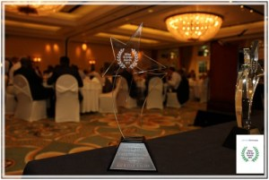 africa oil and gas awards-dinner-2013 3