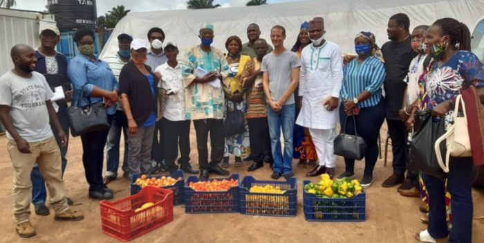 FRESH SALONE TO START EXPORTING VEGETABLES TO THE EU MARKET 3