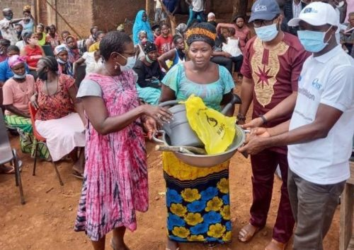 Freetown City Council Expands Urban Farming Support To 200 Women 1