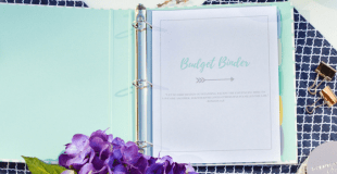The 2017 Budget Binder with Printables