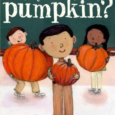 Pumpkins, Pumkins, and More Pumpkins