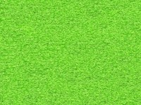 abormotova's Lime Green Carpet