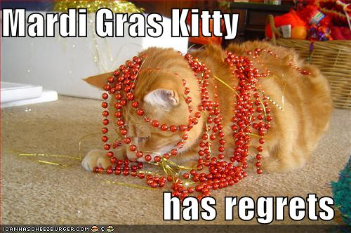 Fat Tuesday Kitty