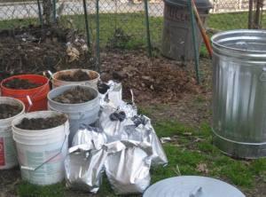 Kitchen scraps make great compost